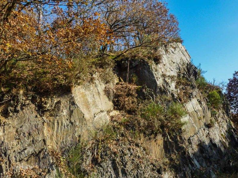 P1030994Monschau_PerlenbachtalsperrMonschau_PerlenbachtalsperrHellenthal