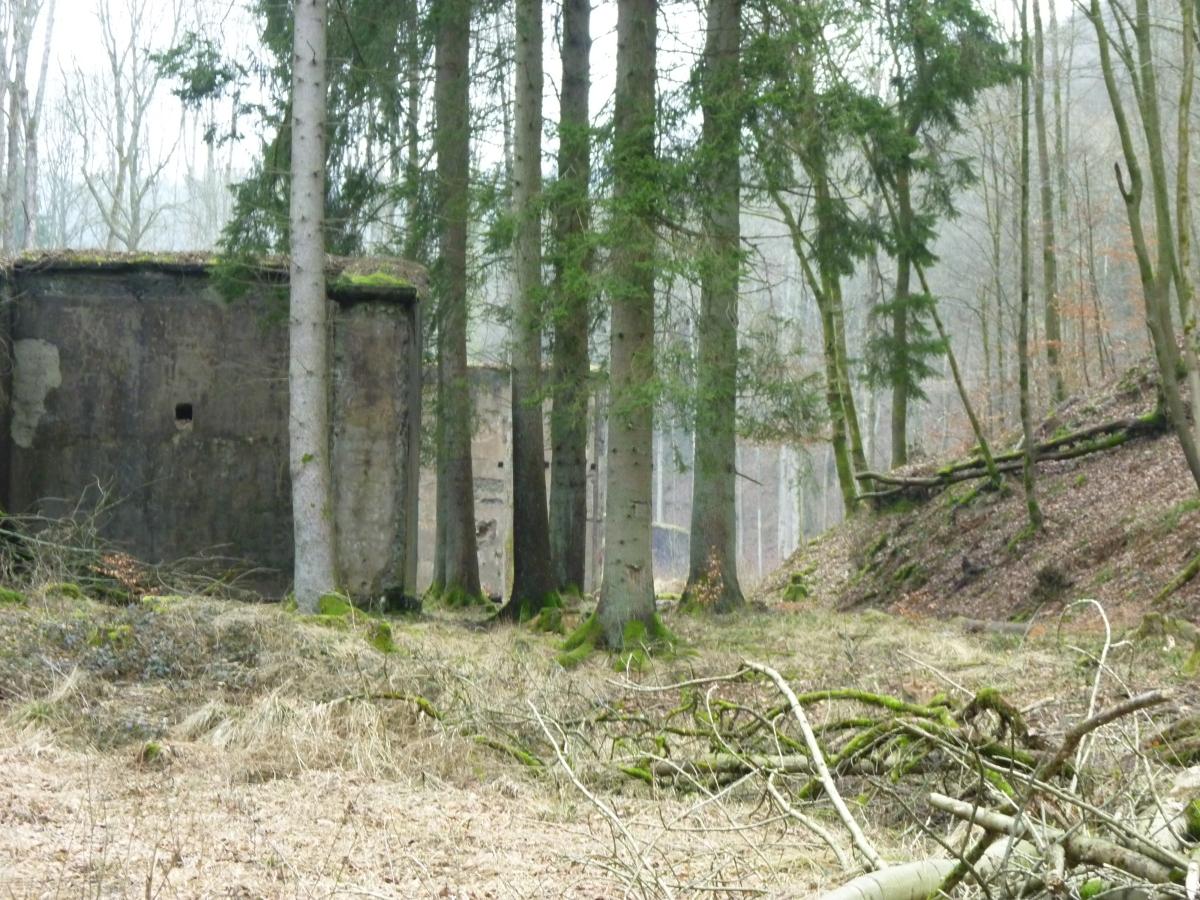 Ruinen 1