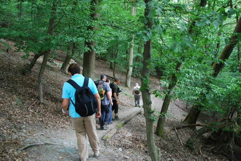 Wanderteufel auf dem Rheinsteig (39)