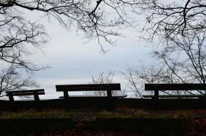 2012 12 15_0423_bearbeitet-1