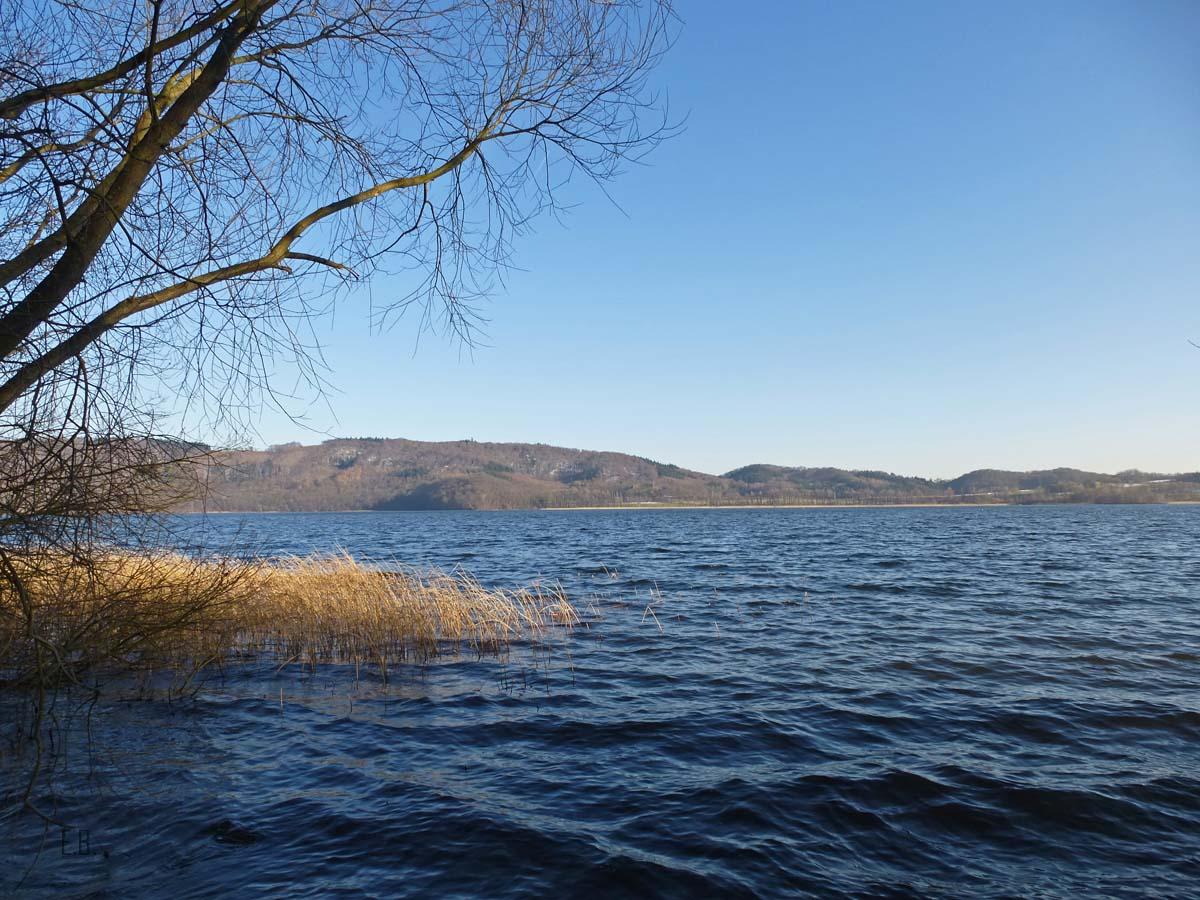 Vulkanlandschaft am Laacher See (109)