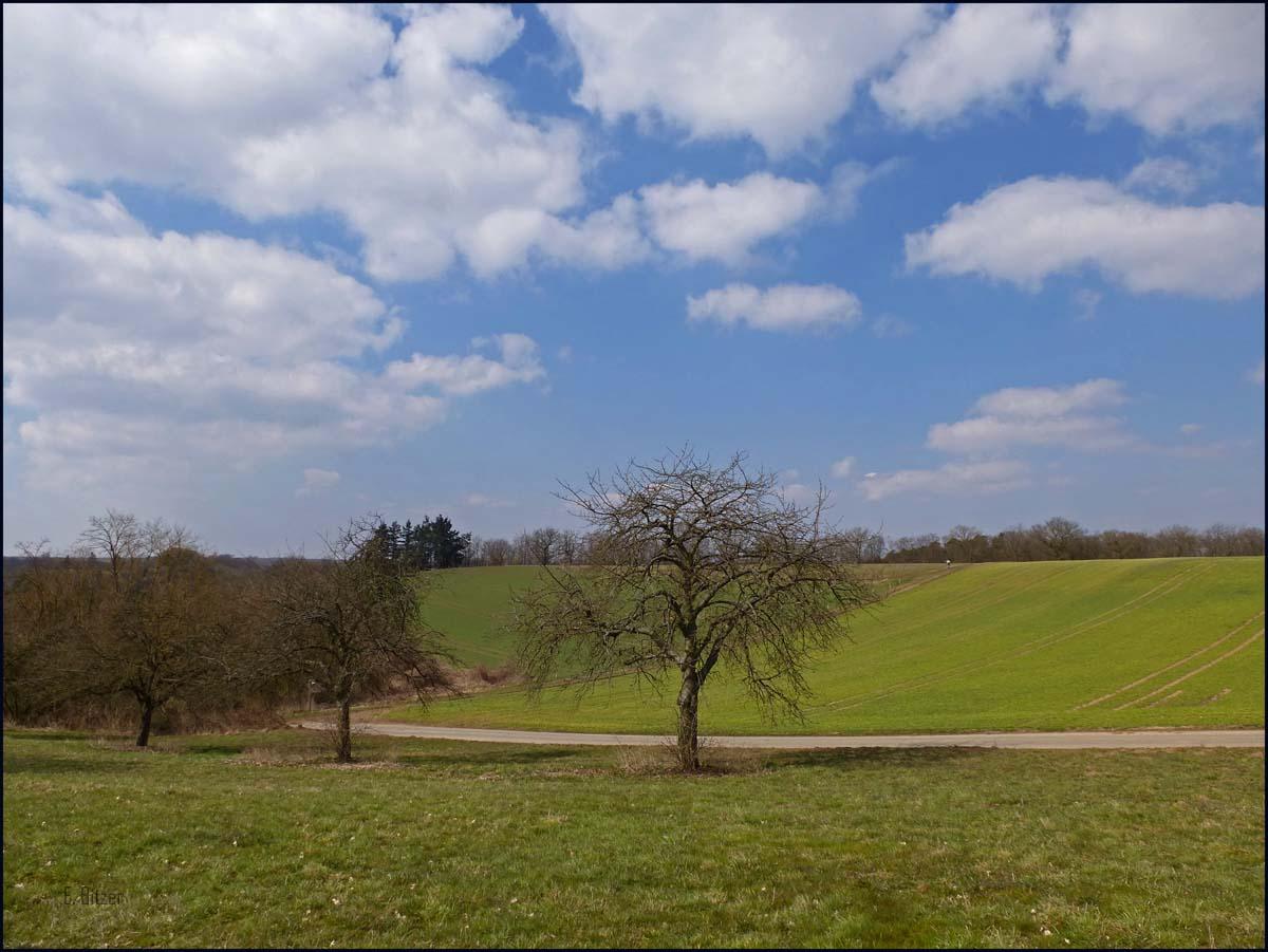 Herrliche Aussichten an diesem sonnigen Frühlingstag