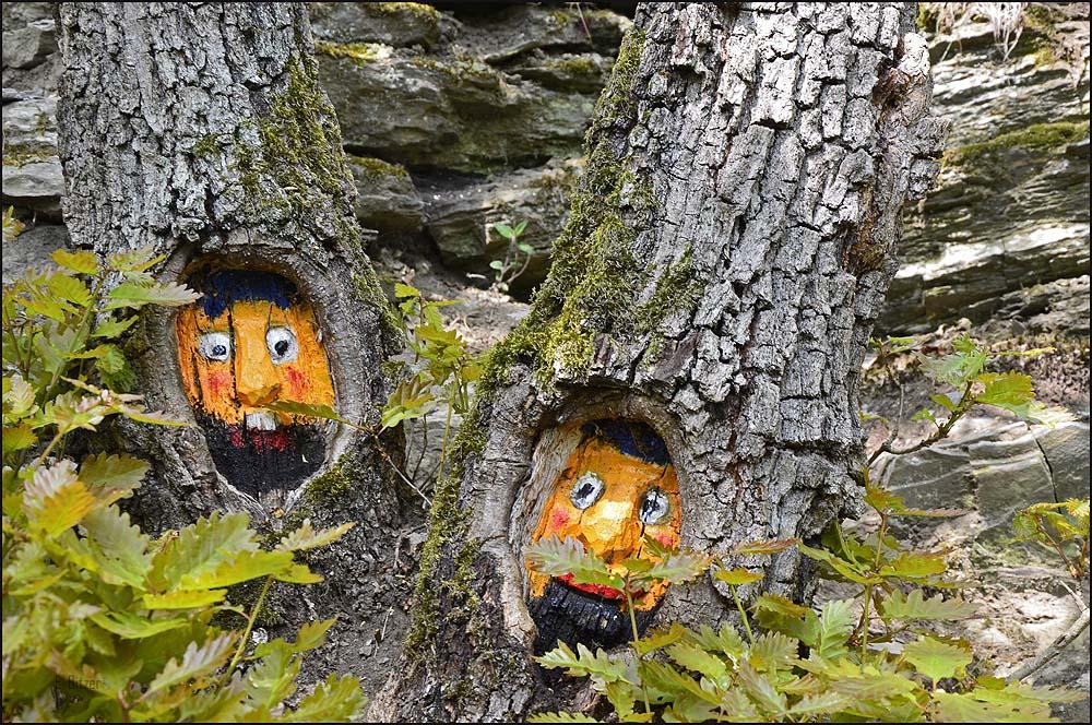 Überall in den Bäumen sind diese Gesichter gemalt.
