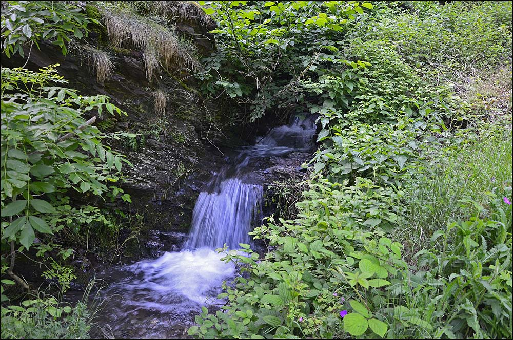 Der Dortbach hat viele natürliche Wasserstufen und im Augenblick, nach den starken Regenfällen, führt er reichlich Wasser zu Tal.