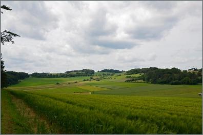 Landschaft5