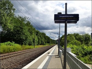 Natursteig_Sieg_E3 (162)