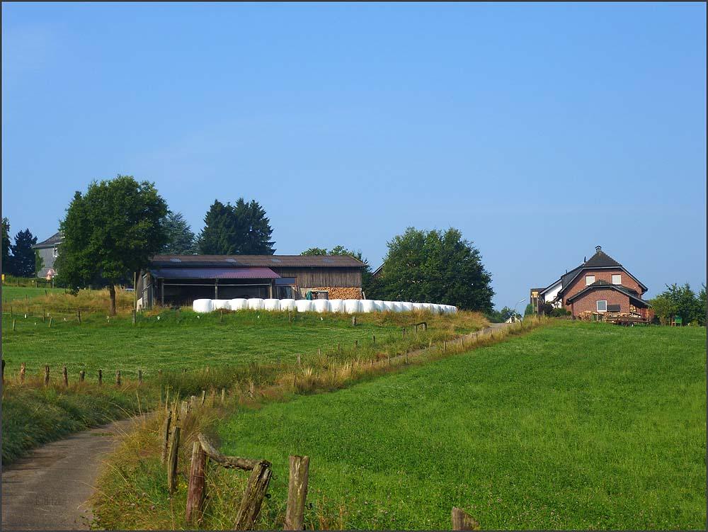 Weites Wasserland_D6 (60)