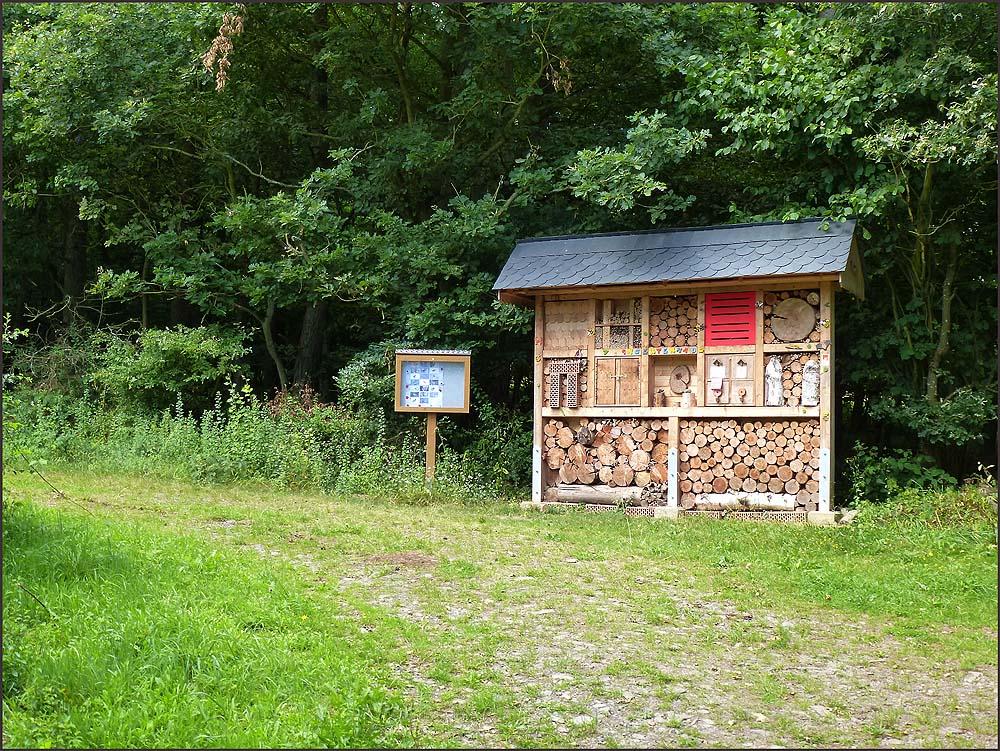 Ein Riesiges Insektenhotel, in dem sich auch Hronissen eingenistet haben.