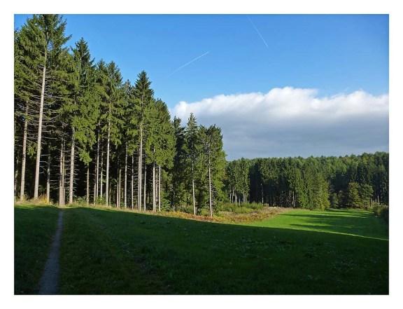 Hueckeswagen_Mul (106)