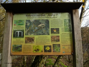 Gruiten_Neanderlandsteig (43)