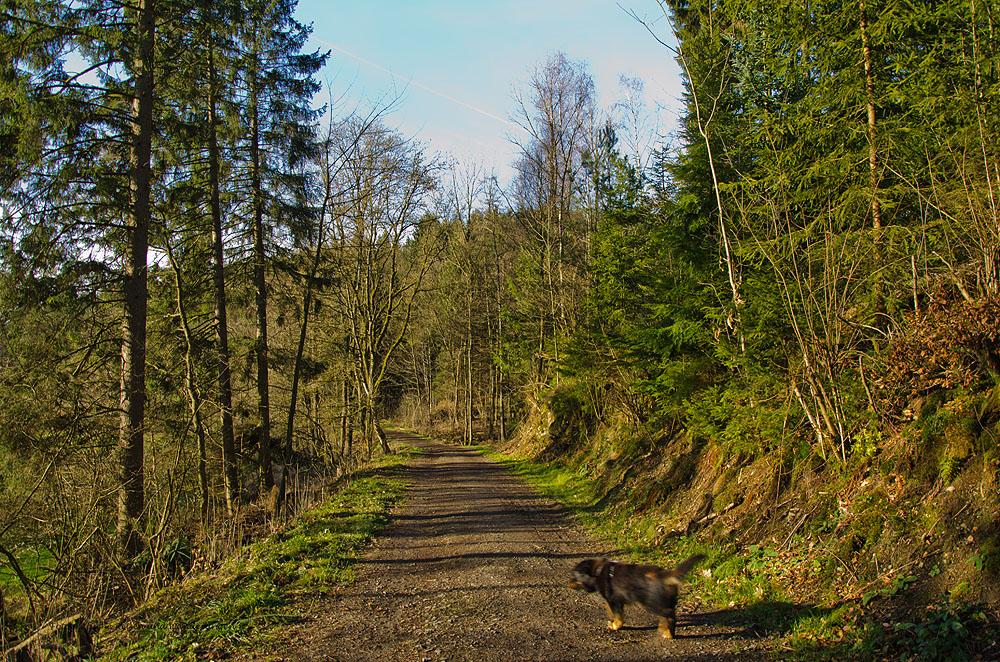 Heimatweg (69)
