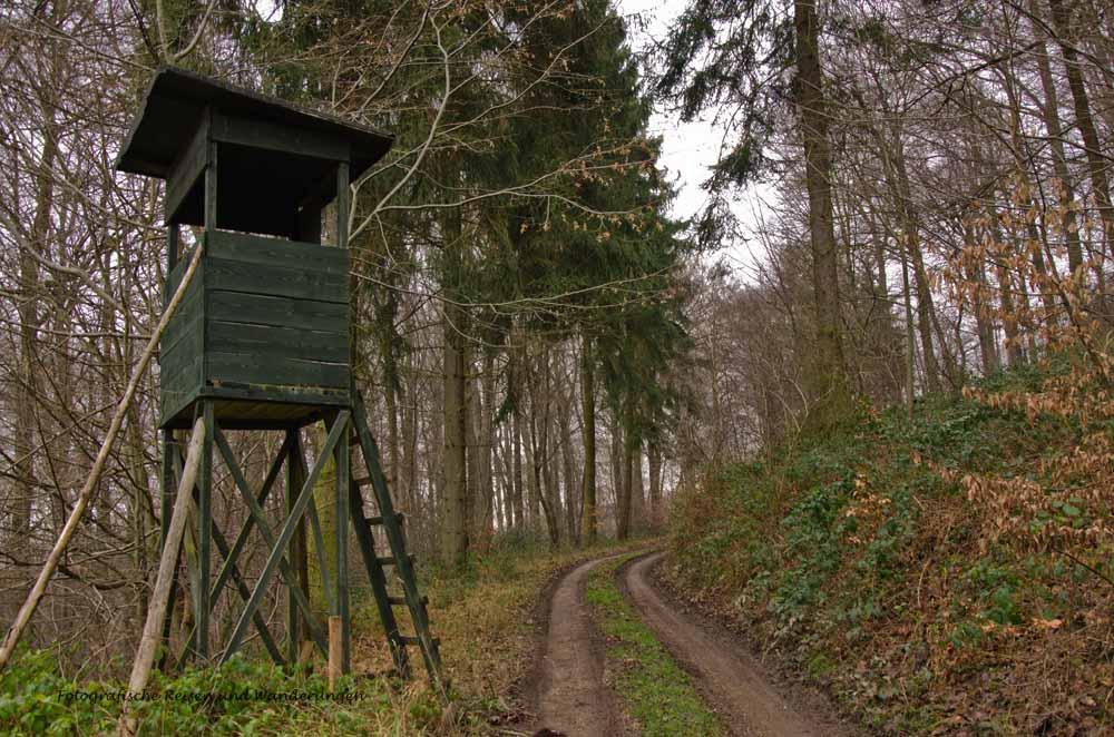 ApolinarisSchleife (13)