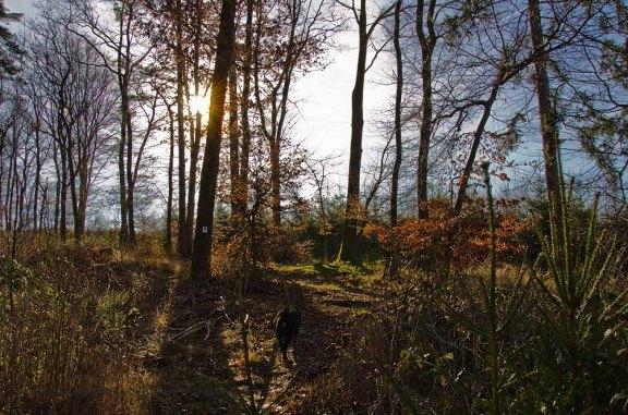Oberes_Baybachtal (14)