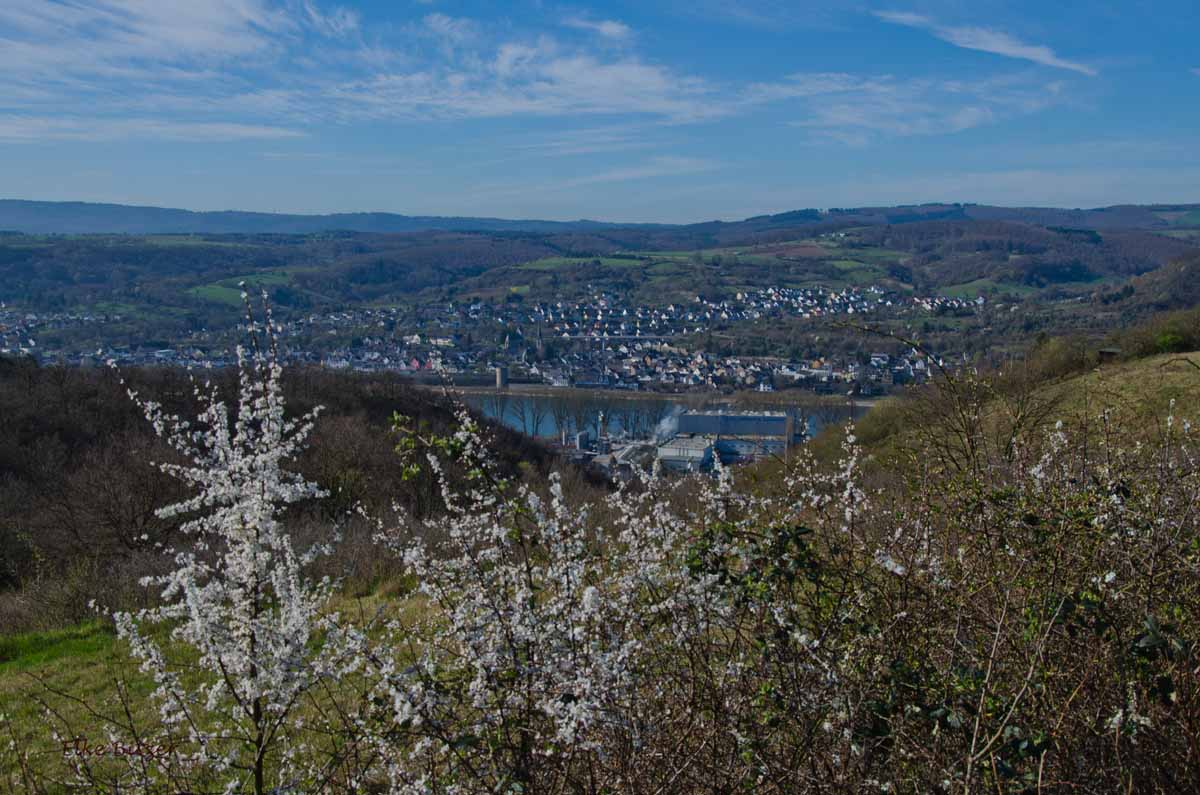 Rundwanderung_Lahnstein_Braubach (27)