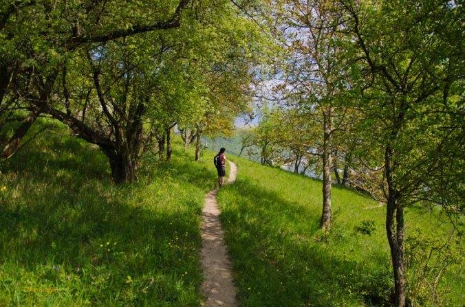 Braubach-KampBornhofen (131)
