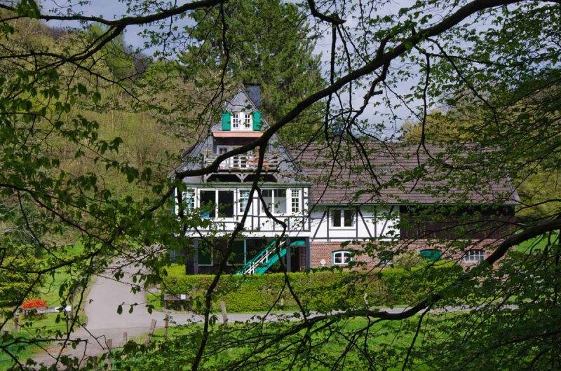 Mühlen und Bäche im Eifgenbachtal (143)