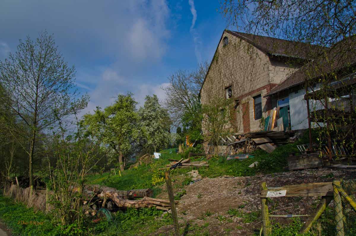 Mühlen und Bäche im Eifgenbachtal (61)