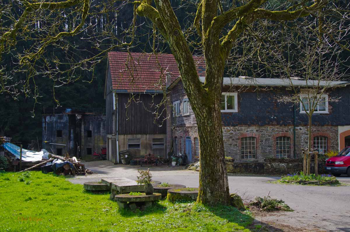 Mühlen und Bäche im Eifgenbachtal (92)