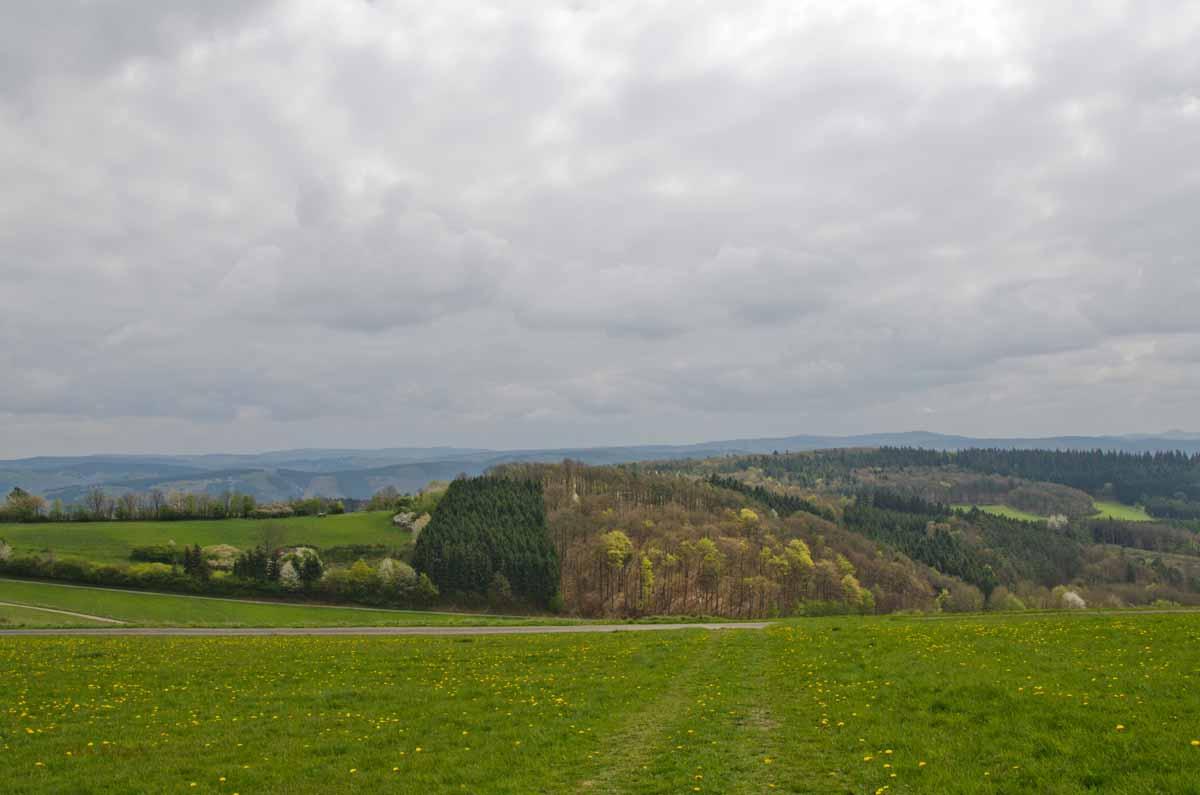 PanoramawegLind (17)