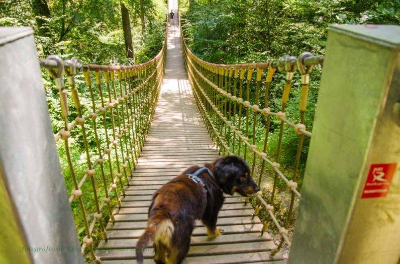 Sollen wir wirklich???? Sollen wir wirklich über diese Hängebrücke?