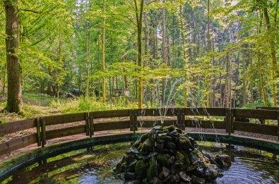 Der Naturspringbrunnen im Waldpark Brombach