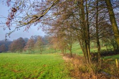 Boellweg_0137