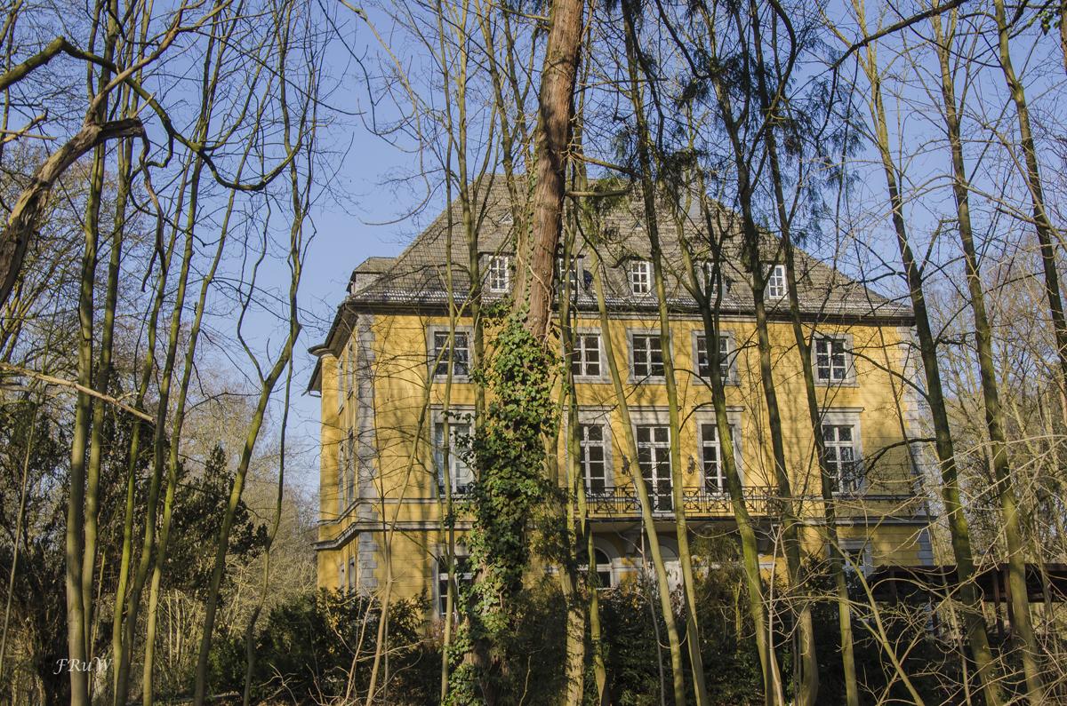 Erftauen und Schloss Türnich_0232