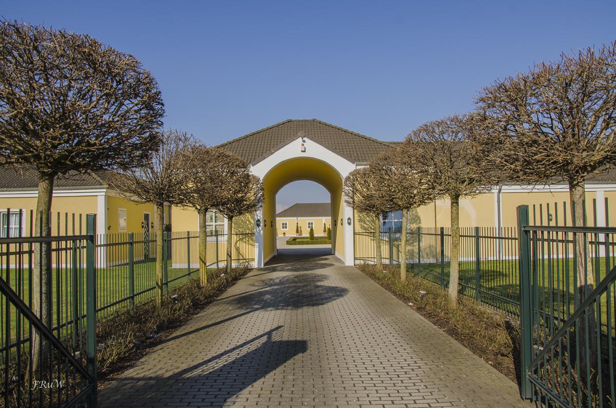 Erftauen und Schloss Türnich_0238