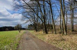 Limesweg_0137