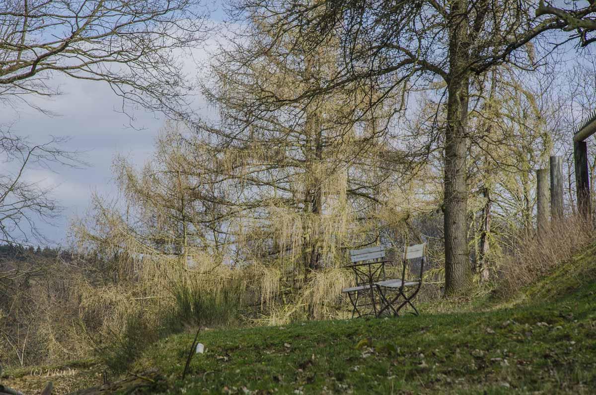 Limesweg_0170