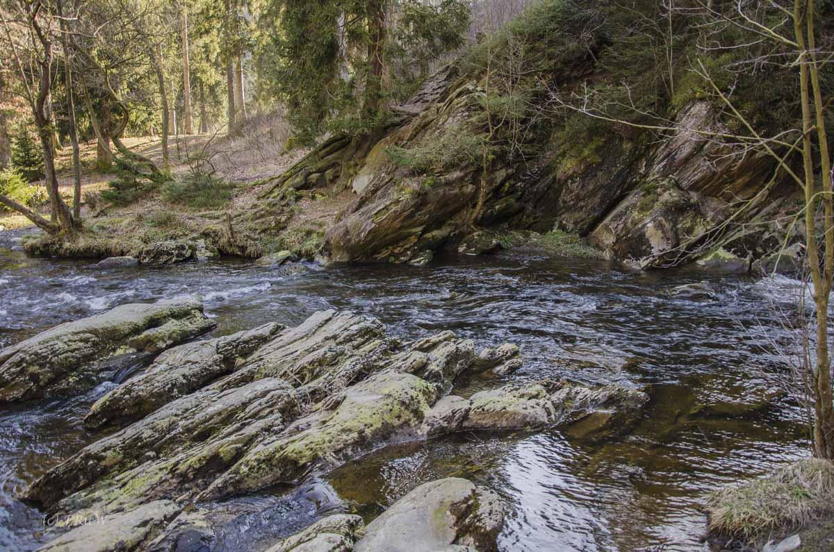 Monschau - Höfen - Rur - Perlenbachtalsperre_0949