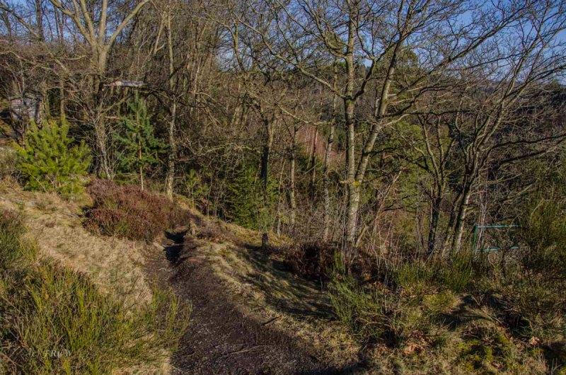 Monschau - Höfen - Rur - Perlenbachtalsperre_0961