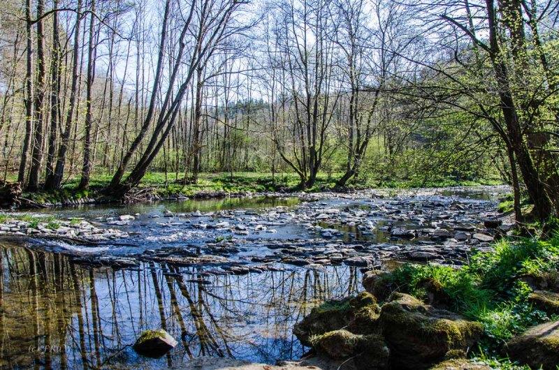 Hachenburg_Tal der Nister 089