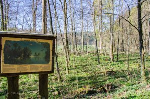 Hachenburg_Tal der Nister 096