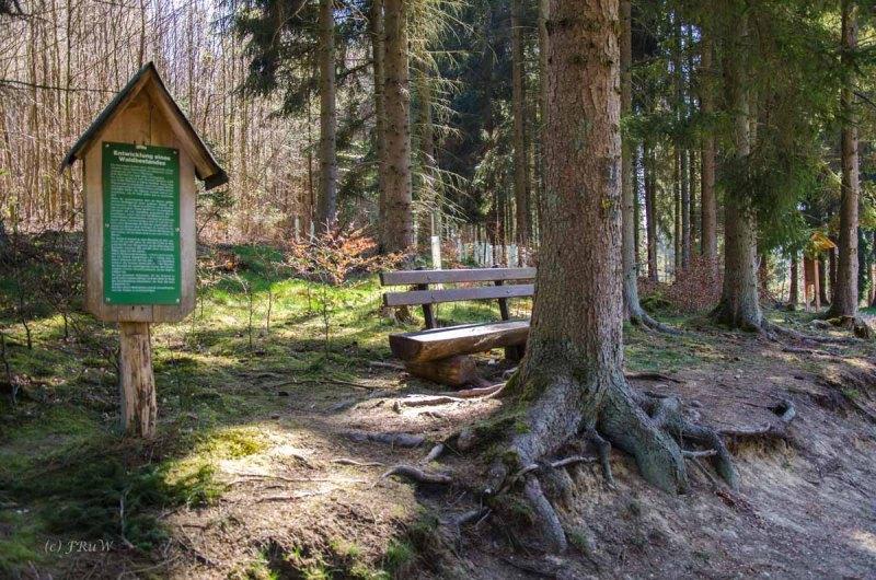 Hachenburg_Tal der Nister 106