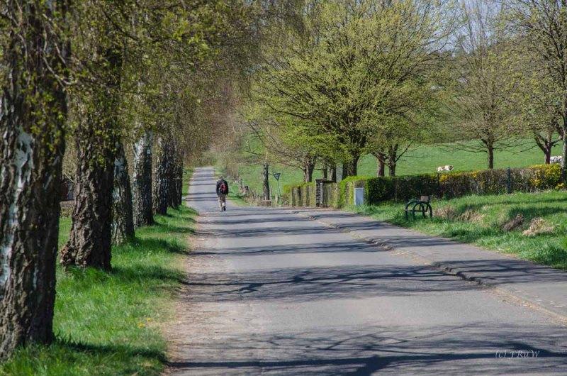 Hachenburg_Tal der Nister 268