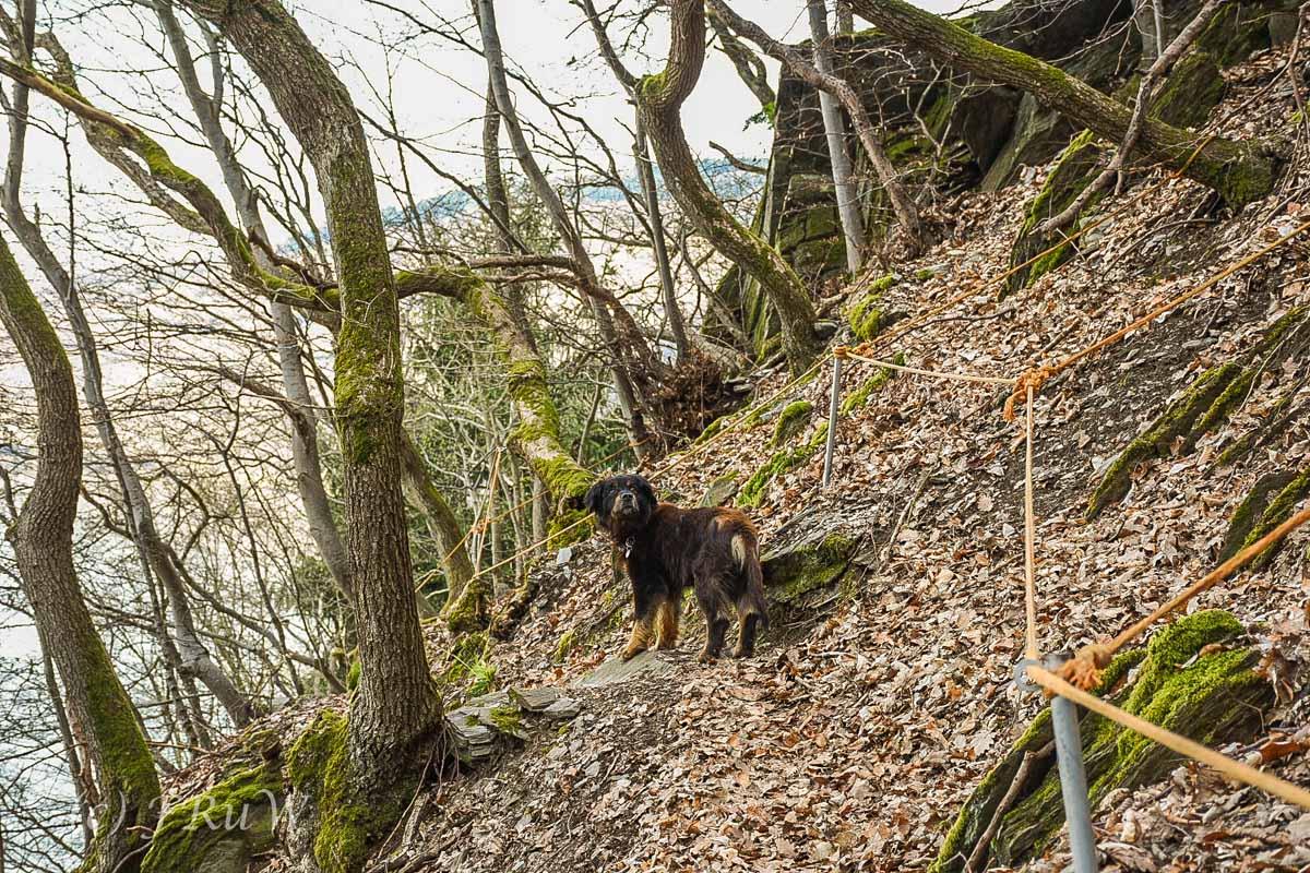 Mehringer Schweiz_Tag 1 (59)