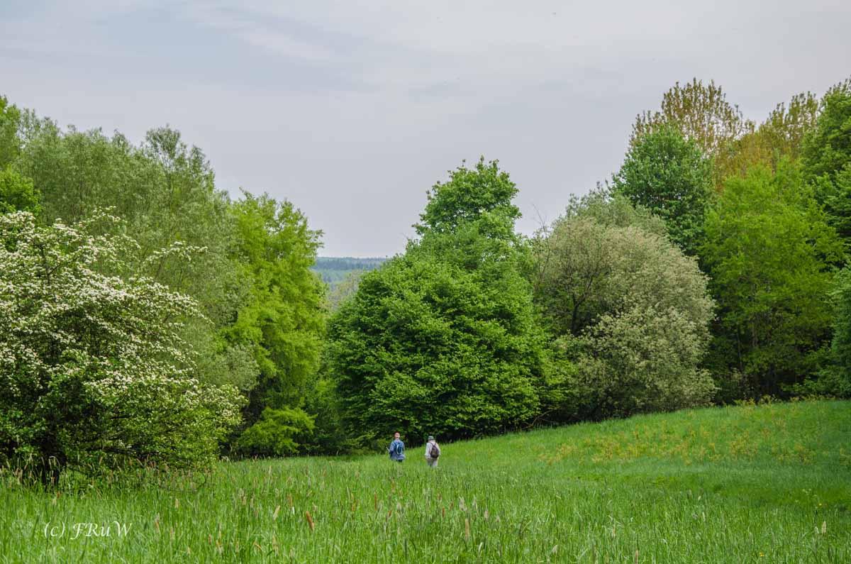 Landesblick_Wolfsschlucht_Krater_0561