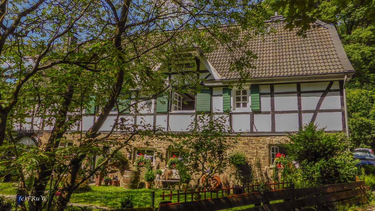 Eifgenbachrunde moderat_0381