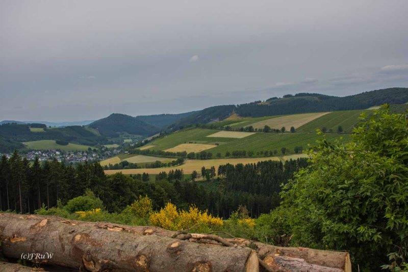 Kahler Asten Steig_0309