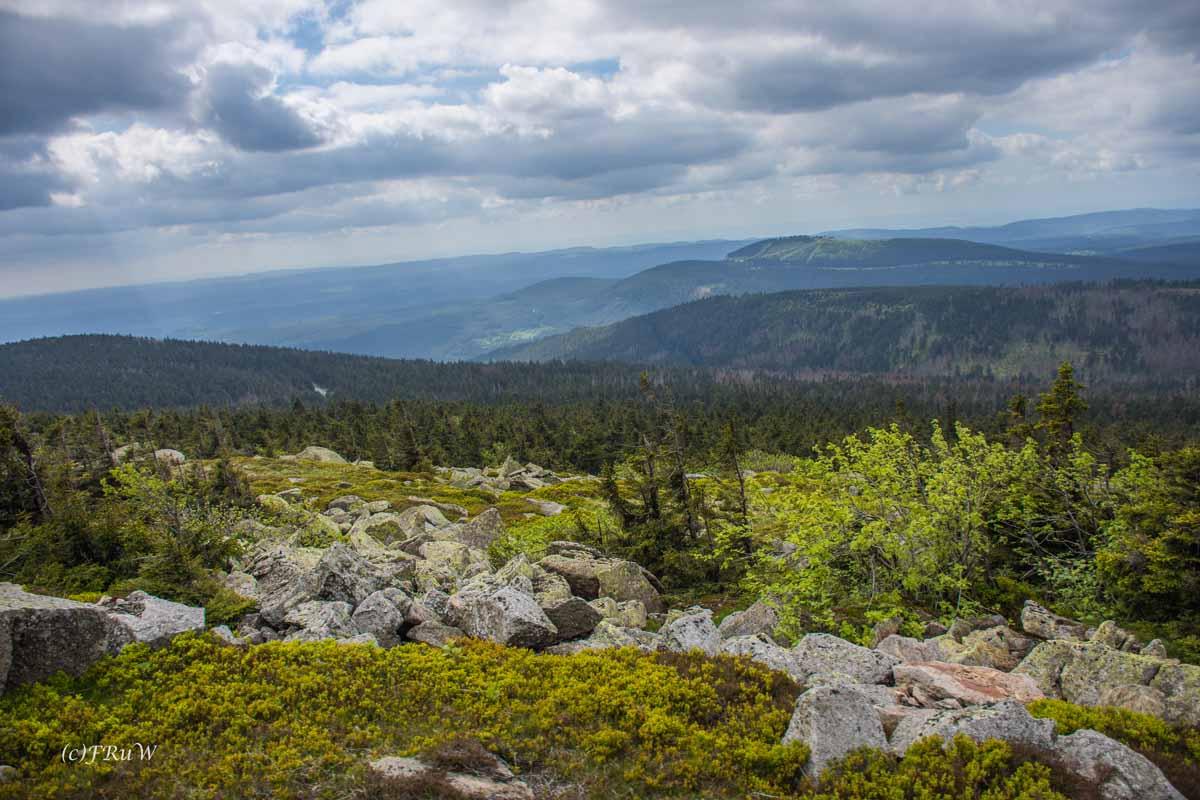 Urlaub Harz 2015_0345