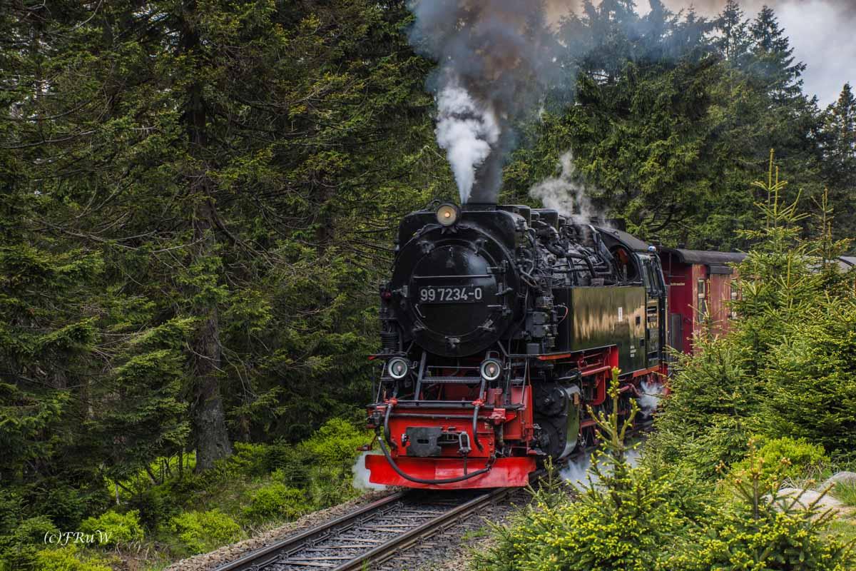 Urlaub Harz 2015_0385