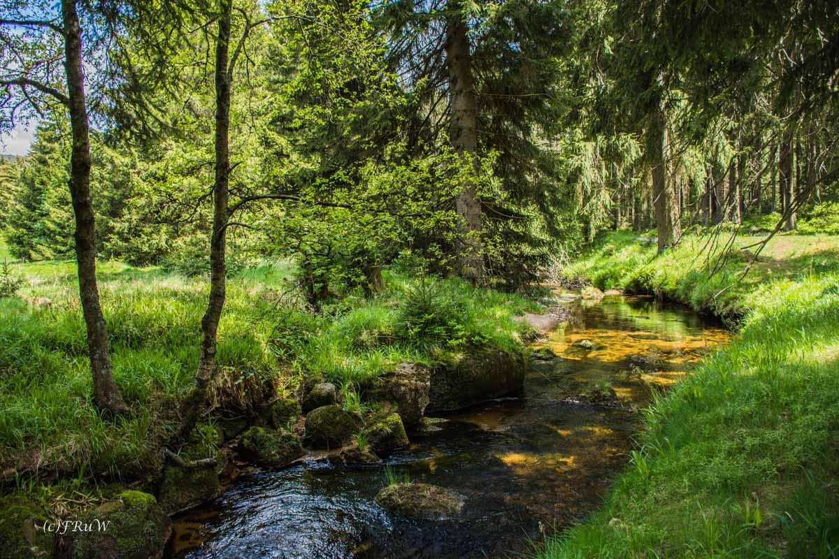 Urlaub Harz 2015_0431