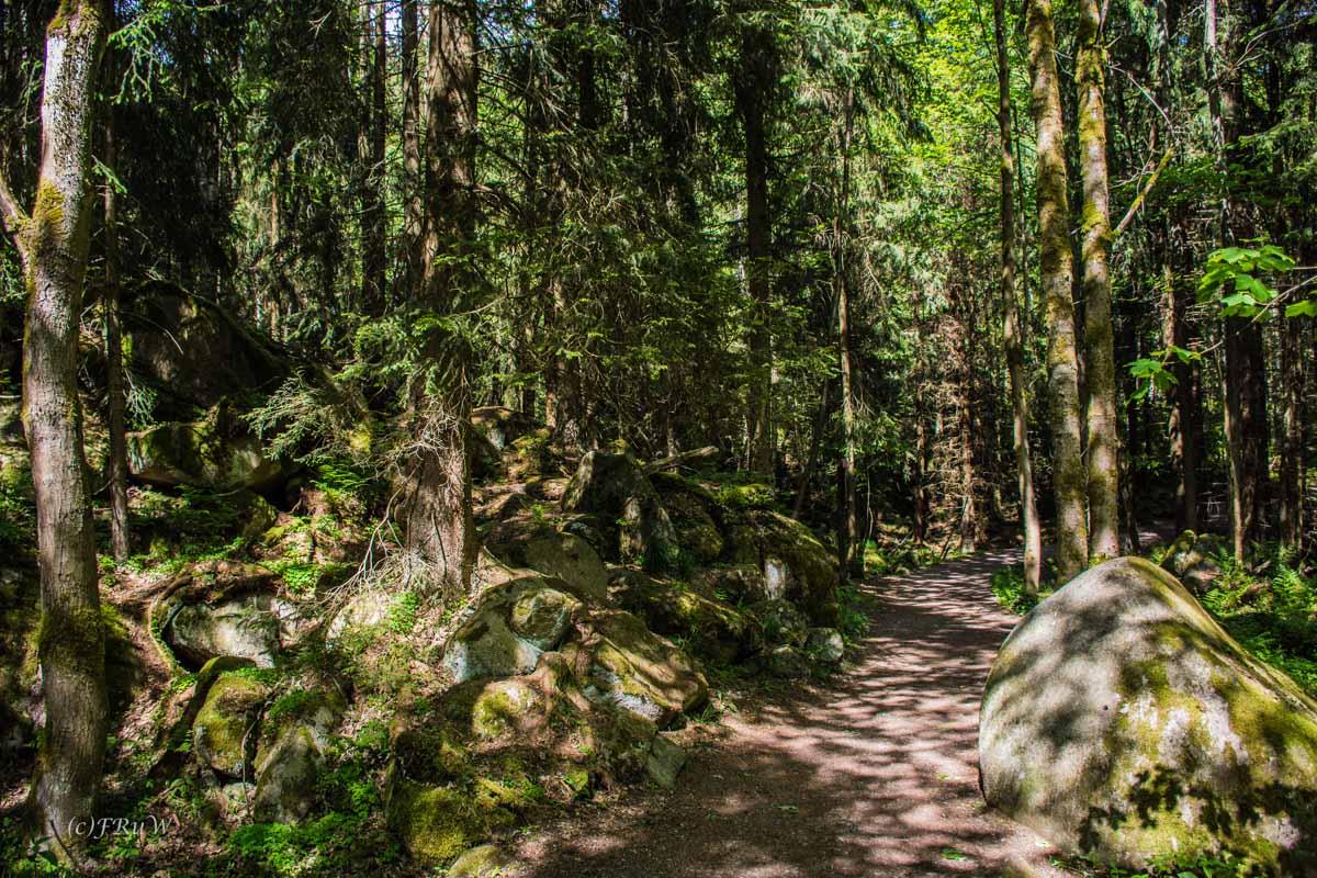 Urlaub Harz 2015_0443