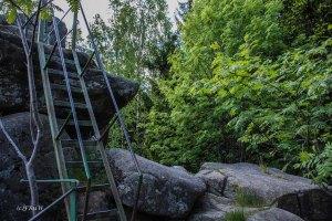 Urlaub Harz 2015_0494