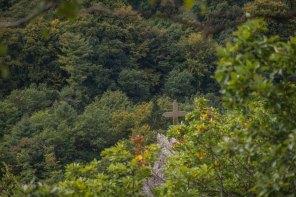 Bernkasteler Baerenstieg (111)