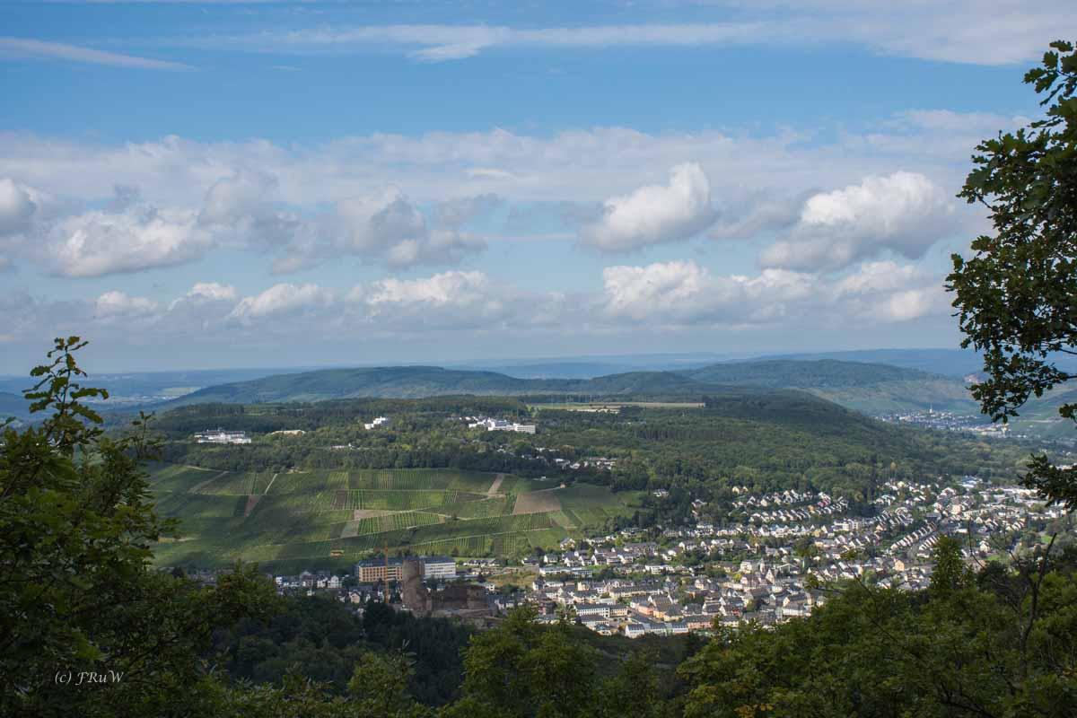 Bernkasteler Baerenstieg (83)