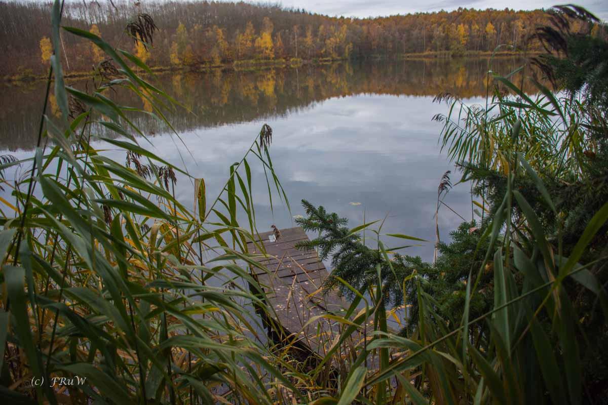 Brühler Seen (58)