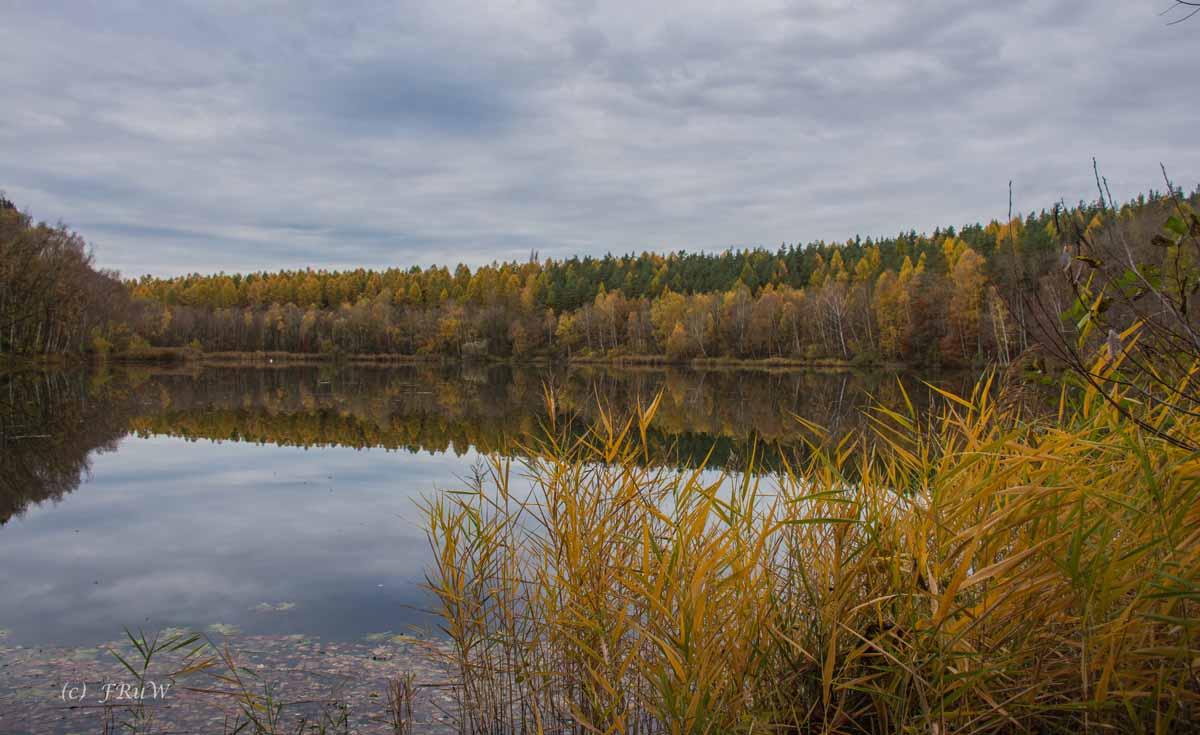 Brühler Seen (70)