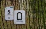 Brühler Seen (9)